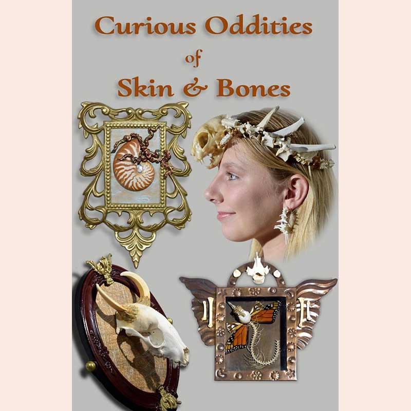 Collage by Curious Oddities of Skin & Bones